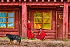 Relaxing Monks
